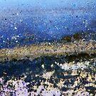 come ashore by Lynne Prestebak