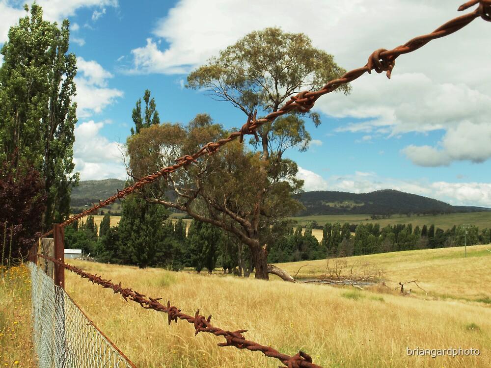 TORANA NSW  by briangardphoto