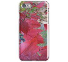beautiful autumn leaves in Eastern Europe iPhone Case/Skin