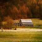 Fall In The Country by Terrie Taylor