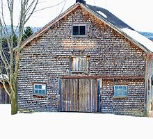 Barn textures by marchello