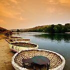 Eggshells on water by Vikram Franklin