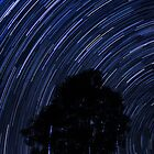 Wentworth Falls Star Trails by Andrew McNeil