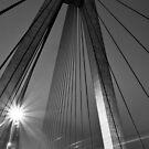 Anzac Bridge by Andrew McNeil