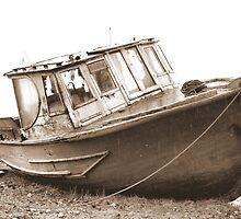 Abandoned Wreck by Sandra Cockayne