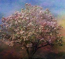 Magnolia Tree in Bloom by Sandy Keeton