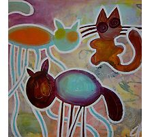 crazy cats Photographic Print