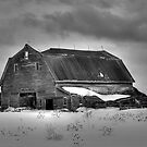 This Old Barn by Gary Smith