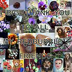 Thank you to all my RB friends for a wonderful year they gave me! by Heidi Mooney-Hill
