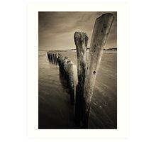 Wooden Poles Art Print