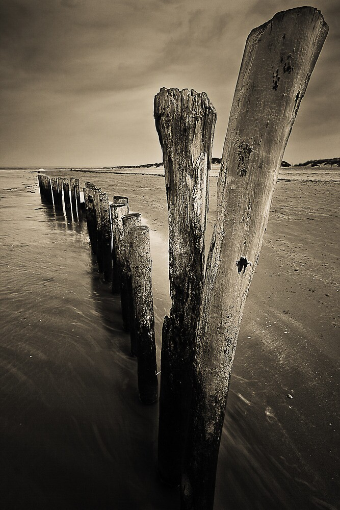 Wooden Poles by Leon Ritchie