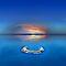 Ocean Views - (Sea Life Category)