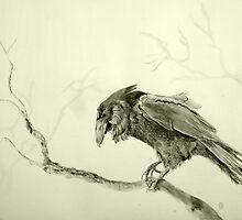 Raven by Astrid de Cock