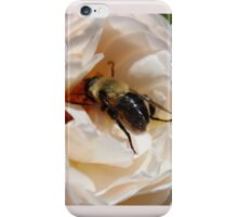 Busy Bee on a Rose iPhone Case/Skin
