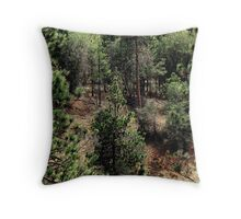 On with the dream... Throw Pillow