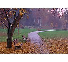 Autumn Leaves In Park Photographic Print