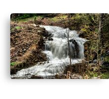 Storm Rush Canvas Print