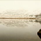 Blea Tarn by HelenBeresford