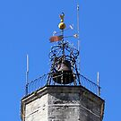 Weather vane on top of the bell tower by bubblehex08