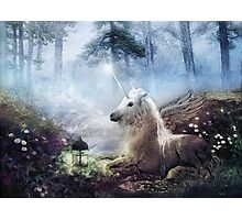 Cast in Stone, Unicorn Photographic Print