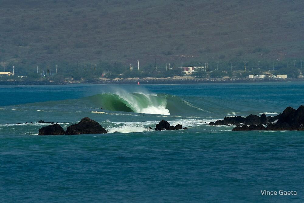 Heavy Hitter on Big Island by Vince Gaeta