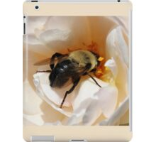Close Up of a Bee iPad Case/Skin
