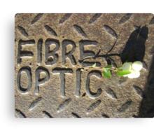 Fibre Optic (mistletoe on metal) Canvas Print