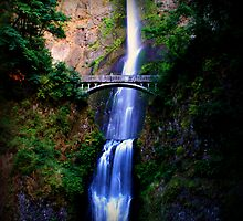Multnomah Falls by Felecia Walls