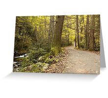Roaring Fork Nature Trail   Greeting Card