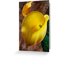 Yellow Calla Lilly  Greeting Card