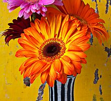 Colorful Mums In Striped Vase by Garry Gay