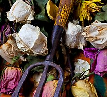 Garden tool and dried flowers by Garry Gay