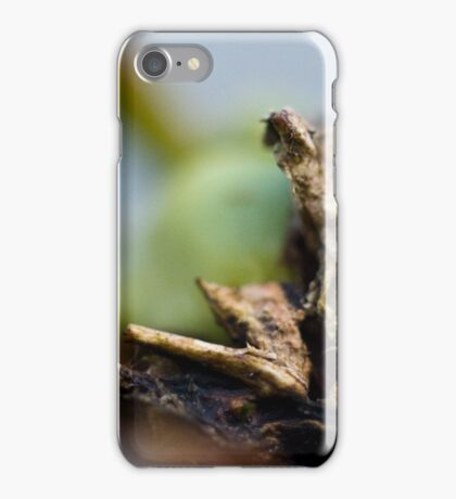 The Greenhouse #2 iPhone Case/Skin