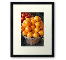 Sunshine Tomatoes Framed Print