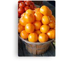 Sunshine Tomatoes Canvas Print