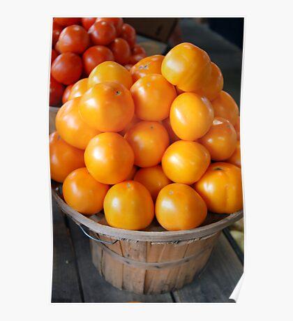 Sunshine Tomatoes Poster