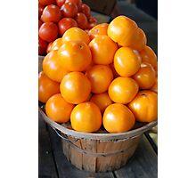 Sunshine Tomatoes Photographic Print