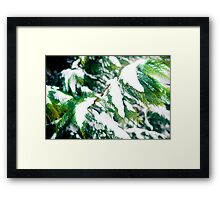The colors of Winter Framed Print