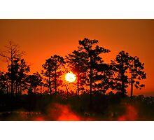 Sunrise In The Everglades Photographic Print