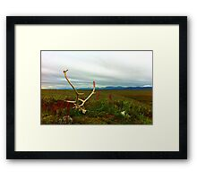 Caribou Kill Framed Print