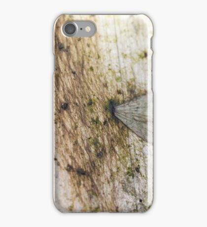 The Greenhouse #1 iPhone Case/Skin