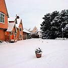 Sunday morning snow by Christopher Cullen