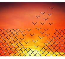 Sunset Escape  Photographic Print
