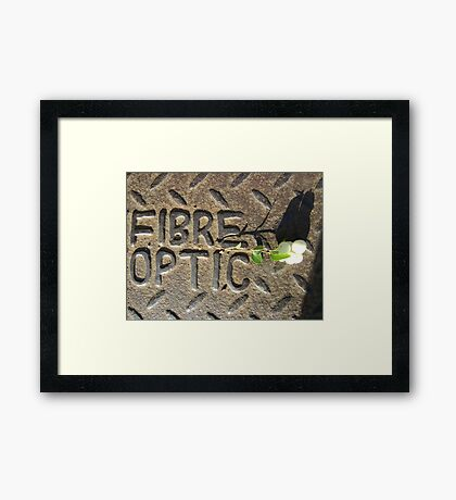 Fibre Optic (mistletoe on metal) Framed Print
