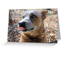 Sweet Dog Dallas Greeting Card