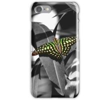 Tailed jay - selective colour iPhone Case/Skin