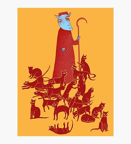 Herding Cats Photographic Print