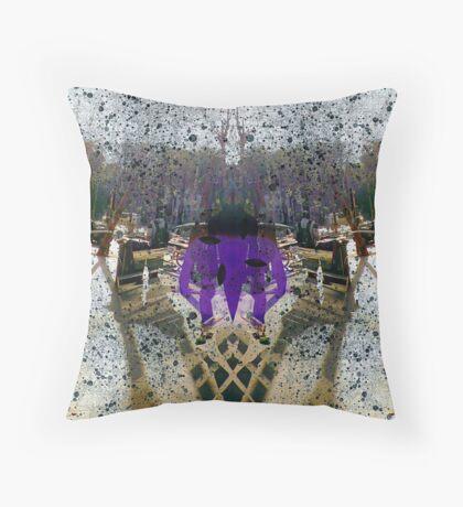 P1390022 _XnView _Iographica _GIMP Throw Pillow