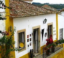 Walled City of Obidos - Portugal by Marilyn Harris