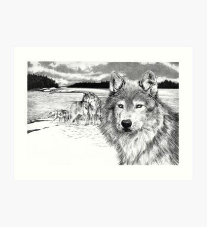 Wolves at Rainey Lake Art Print